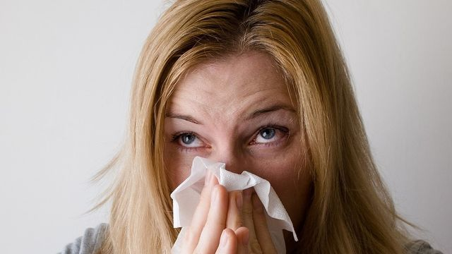 Atelier Herboristerie - Les allergies