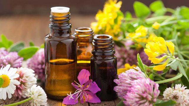 A la découverte des huiles essentielles