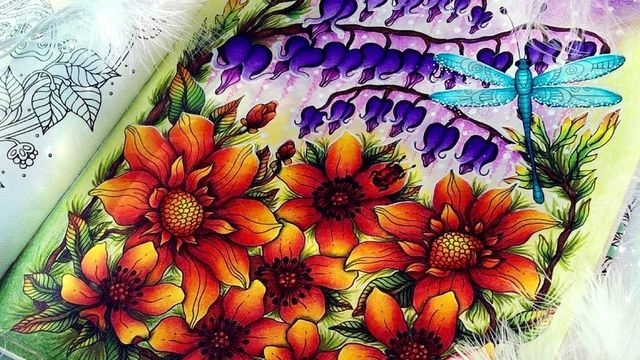 Coloriage anti-stress  -  Révélez l'artiste en vous!