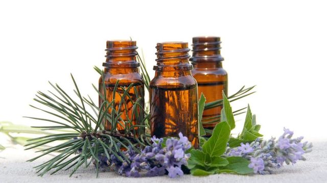 Formation en Aromathérapie - Introduction
