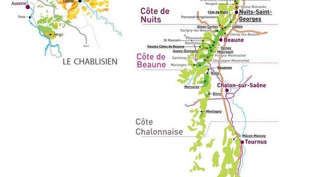 Découverte du vignoble de Bourgogne