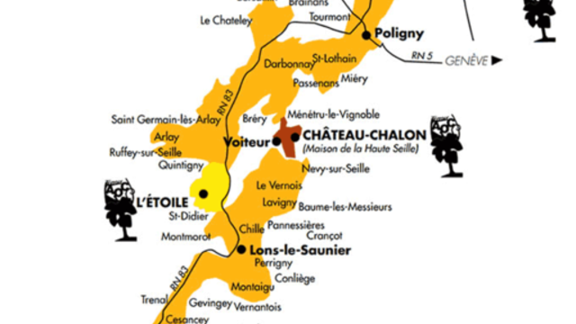 Découverte du vignoble de Jura/Savoie/Bugey
