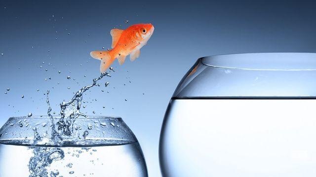 Gelule d'eau, se débarraser de la peur de l'eau