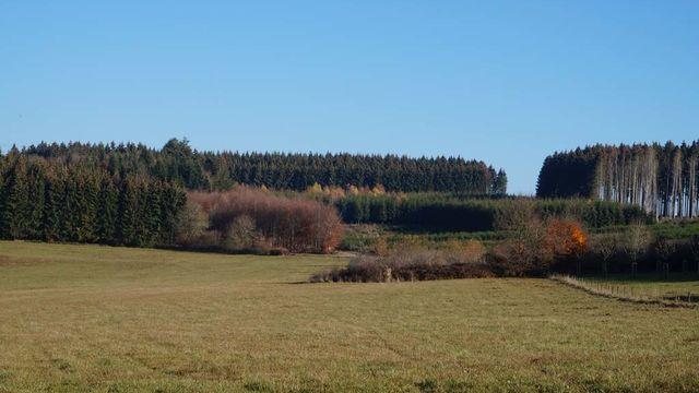 Randonnée : Daverdisse, village paisible entre rivières