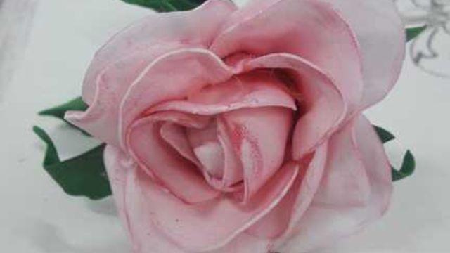 Créations de roses
