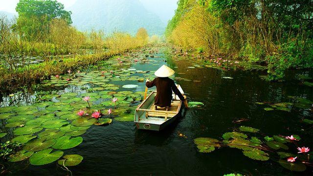 Cours de langue vietnamienne pour voyager