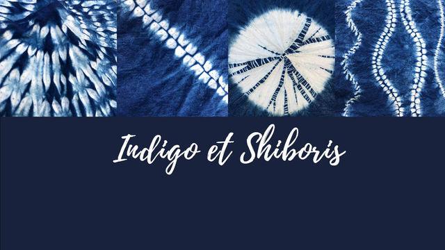 Indigo et Shiboris