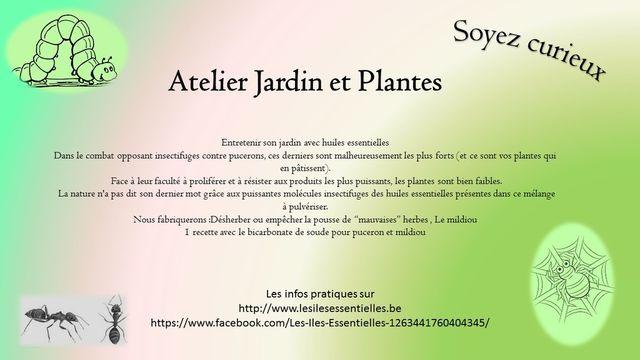 Atelier Jardin, Plantes et animaux