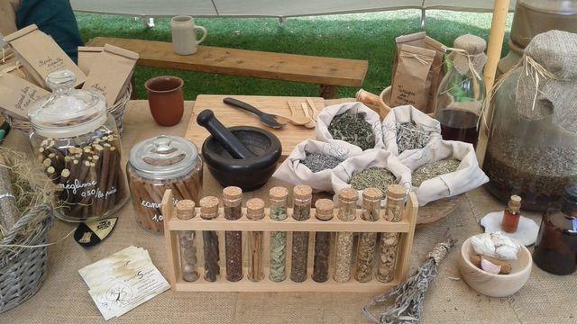 Atelier d'herboristerie - C'est d'été!