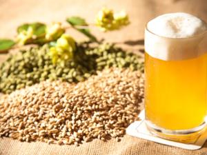 Brassage artisanale de bière