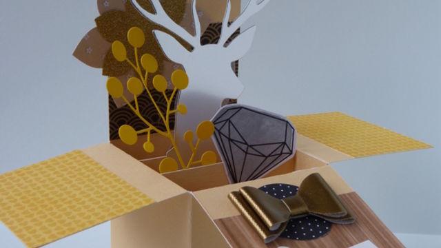 Création d'une carte pop-up 3D (boîte)