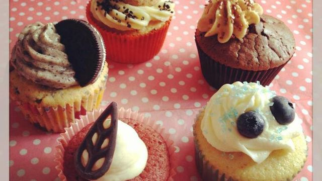 Cupcakes made in USA / ADULTES
