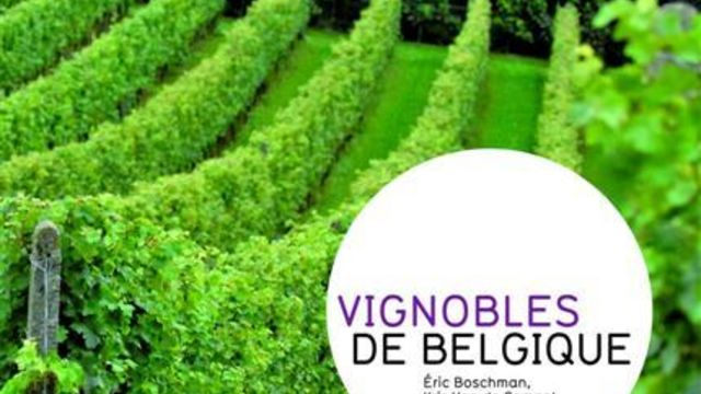 A la découverte des vins belges