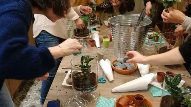 Atelier création de terrariums