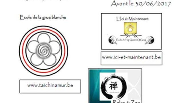 Stage de pratique en Tai chi chuan et Qi Gong