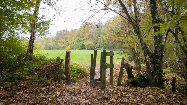 Outdoor - Pratique des bases de la photographie - Uccle