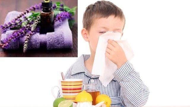 Formation: L'Aromathérapie pédiatrique
