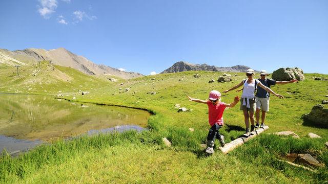 Hydrolats de l'été