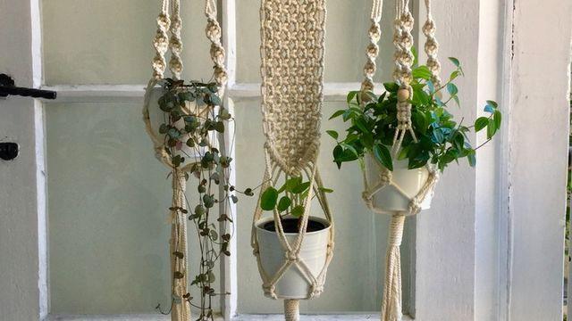 Atelier Macramé Débutant - Suspension pour plantes
