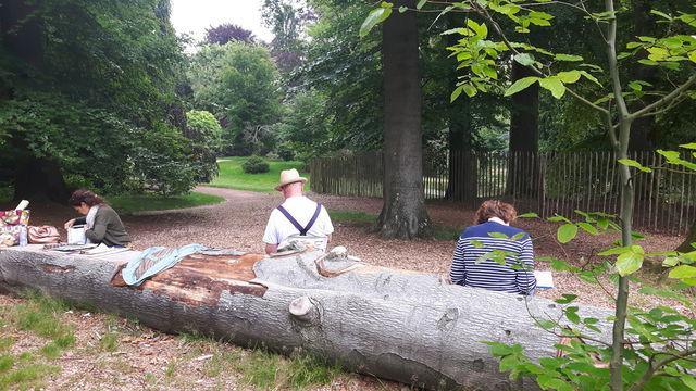 stage de dessin dans la naturel:  Forêt de Soignes