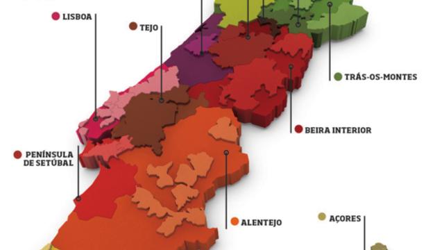 Découverte et dégustation du vignoble Portugais
