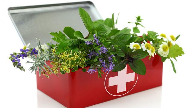 Préparer sa trousse de voyage avec l'aromathérapie
